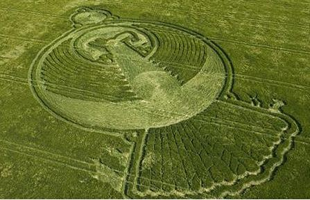 Phoenix Themed Crop Circle