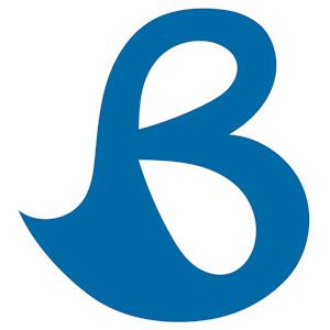 Bliss logo - blue on white300